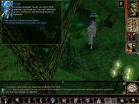 Neverwinter Nights, скриншот, 57KB