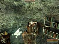 Gothic 3     скриншот, 150KB