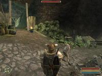 Gothic 3     скриншот, 118KB