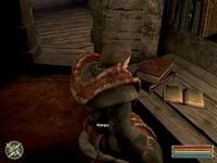 Gothic 3     скриншот, 90KB