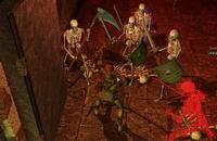Neverwinter Nights, скриншот, 40KB