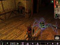 Neverwinter Nights, скриншот, 94KB