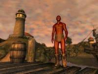 Oblivion, скриншот, 58KB