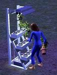 Sims 2, скриншот, 42KB