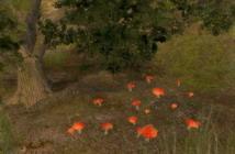 The Guild 2     скриншот, 146KB