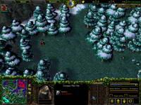 Warcraft III, скриншот, 124KB