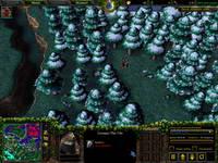 Warcraft III, скриншот, 126KB