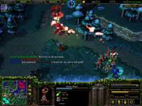 Warcraft III, скриншот, 104KB