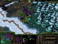 Warcraft III, скриншот, 121KB