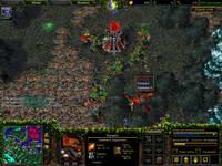 Warcraft3, скриншот, 126KB