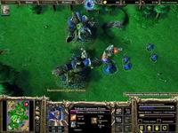 Warcraft 3 TFT,скриншот, 149KB