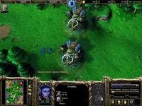Warcraft 3 TFT,скриншот, 153KB