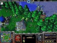 Warcraft 3 TFT,скриншот, 156KB