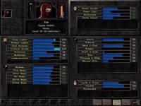 Wizardry8, скриншот, 60KB