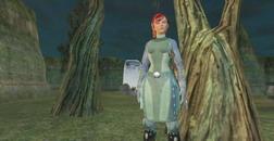 EverQuest II     скриншот, 123KB