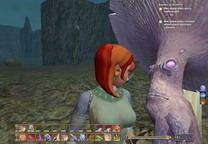 EverQuest II     скриншот, 151KB