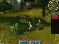 GuildWars, скриншот, 89KB