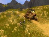 GuildWars, скриншот, 85KB