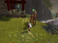 GuildWars, скриншот, 72KB