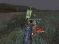 The Lord of the Rings Online: Shadows of Angmar     скриншот, 110KB