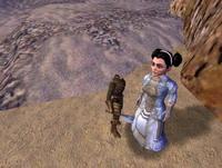 Vanguard: Saga of Heroes     скриншот, 149KB