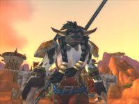 скриншот World of Warcraft, 84KB