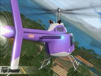Flight Simulator, скриншот, 139KB
