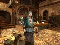 Guild2, скриншот, 134KB