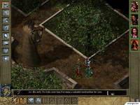 Baldur's Gate, скриншот, 76KB
