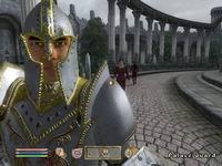 Oblivion, скриншот, 135KB
