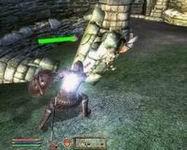 Oblivion, скриншот, 158KB