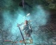 Oblivion, скриншот, 116KB