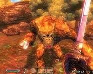 Oblivion, скриншот, 149KB