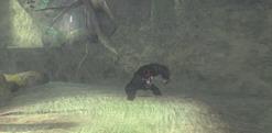 Черный Корсар     скриншот, 103KB