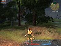 Silverfall     скриншот, 144KB