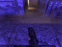 Penumbra, скриншот, 81KB