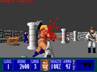 Wolfenstein 3D     скриншот, 40KB